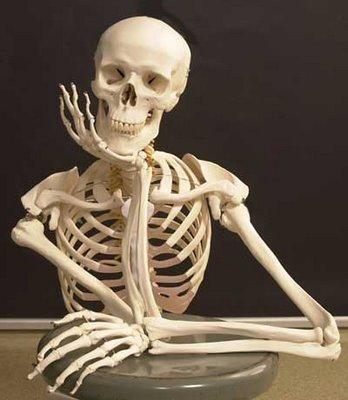 Cómo cuidar el esqueleto humano