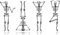 ¿Cómo cuidar los huesos del esqueleto humano?