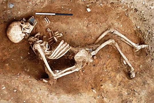 ¿Por qué los huesos no se descomponen?